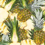 Abstract background with slices of fresh pineapple Stock Photos