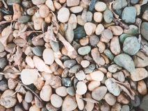 Abstract background : small stone and dry leaf from gardening de. Coration Royalty Free Stock Photo