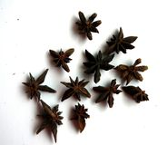 Abstract background of star anise. An abstract background of star anise on a white background royalty free stock images