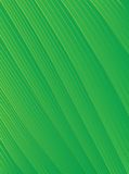 Abstract background striped green Stock Images