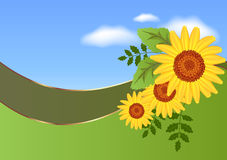 Abstract background with  sunflowers Royalty Free Stock Image