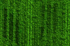 Abstract background texture in green with rugged pattern royalty free stock image