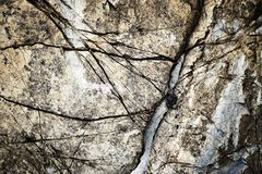 Grooves in an old limestone. Abstract background or texture grooves in an old limestone Royalty Free Stock Photo