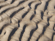 Abstract background texture of sand with ridged ripples formed by the action of the water in a full frame pattern for marine or va Royalty Free Stock Image