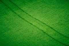 Abstract Agriculture Texture Stock Image