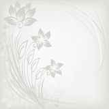Abstract background with three flowers Royalty Free Stock Photos
