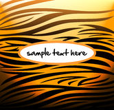 Tiger pattern Stock Image