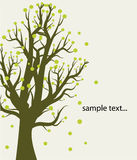 Abstract background with tree. Card for your design with abstract tree Stock Photos