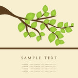 Abstract background with tree. Royalty Free Stock Images
