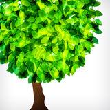 Abstract background of tree. Royalty Free Stock Photo