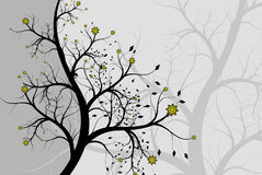 Abstract background a tree with colours. Collection abstract a backgrounds - silver flowers Royalty Free Stock Photo