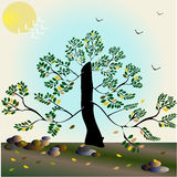 Abstract background with a tree - Illustration. Abstract background with a tree Stock Photos