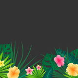 Abstract Background with Tropical Leaves and Flowers Stock Photography