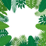 Abstract background with tropical leaves. Jungle pattern. Floral Stock Photo