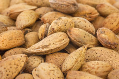 Abstract background: unshelled almonds Stock Photos