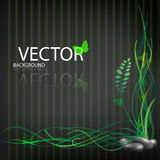 Abstract background. Vector jungle Stock Images