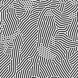 Abstract background of vector organic irregular lines and dots pattern. Black and white chaotic design vector illustration