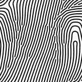 Abstract background of vector organic irregular lines maze pattern. Abstract background of vector organic irregular fingerprint style lines maze pattern. Black stock illustration