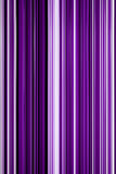 Abstract background of vertical  line purple  color with light  color Stock Image
