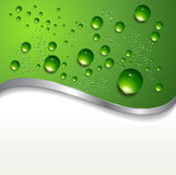 Abstract background with water drops. On green, vector vector illustration