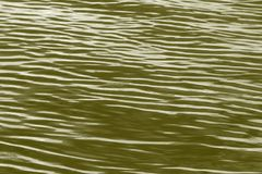 Waves on river colored in golden Stock Photo