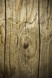 Abstract background of weathered wooden material. For design royalty free illustration