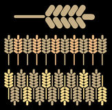 Abstract background wheat 3 Royalty Free Stock Photo