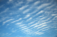 Abstract background of white wavy clouds on a bright blue sky. Gaseous education. Condensation in the air at height. Day of autumn in September Stock Image