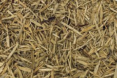 Abstract background wood mulch chips Stock Photography