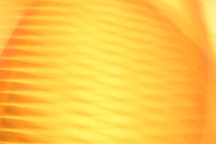 Abstract background in yellow stock photos