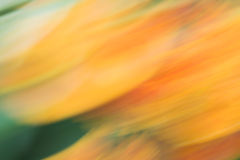 Abstract background in yellow and green colors Royalty Free Stock Image