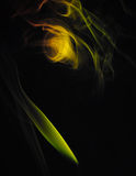Abstract background - yellow, green fire shape. Abstract smoke for background on black stock illustration