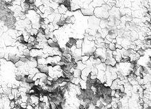 Abstract Backgrounds color, painting collage with. Spots, black and white Stock Images