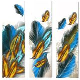 Abstract backgrounds with feathers. Vector set of floral hand drawn brochures with detailed feathers Royalty Free Stock Images