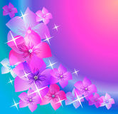 Abstract backgrounds with transparent flowers. Royalty Free Stock Photos
