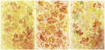 Abstract backgrounds, watercolor, leafs Stock Image