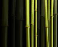 Abstract bamboo forest foliage jungle illustration Royalty Free Stock Photography