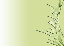 Abstract bamboo in green. Abstract bamboo on a light green background Royalty Free Stock Images