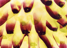 Abstract bananas Stock Photos