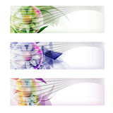 Abstract banner and flower Royalty Free Stock Photos