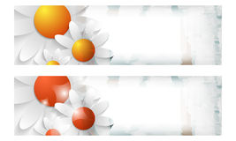 Abstract banner with flowers Royalty Free Stock Images