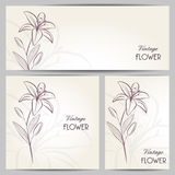 Abstract banners with hand-drawing flower lily Stock Image