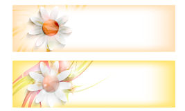 Abstract Banners With Flowers Royalty Free Stock Image