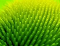 Abstract barbed background. Abstract thorn or bristle in yellow green color. Computer generated stock image