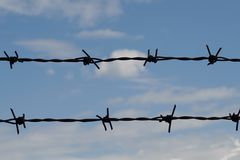 Abstract barbed wire Stock Photos
