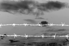 Abstract barbed wire Royalty Free Stock Image