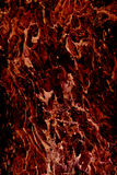 Abstract bark red Royalty Free Stock Photo