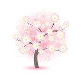Abstract beautiful blossom tree with pink flowers Stock Image