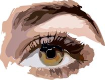 Abstract beautiful female eye. Vector illustration of paints stock photography