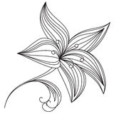 Abstract beautiful flower of lily stock illustration